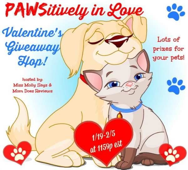 pets in love